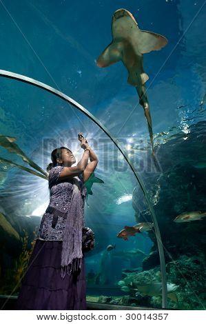 Woman In Aquarium