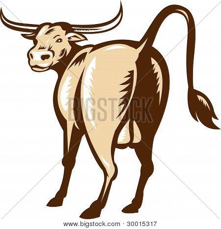 Texas Longhorn Bull Rear View Retro