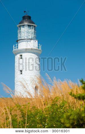 White Lighthouse Tall Grass Vertical
