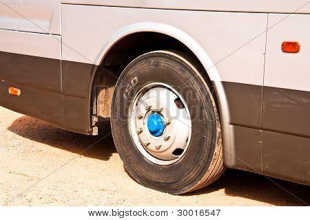 Wheels Bus.
