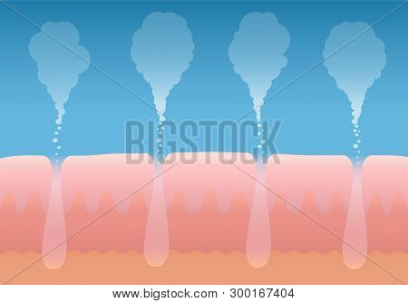 Skin Breathing. Human Cutaneous Respiration. Schematic Cross Section Illustration Of Layers Of Skin