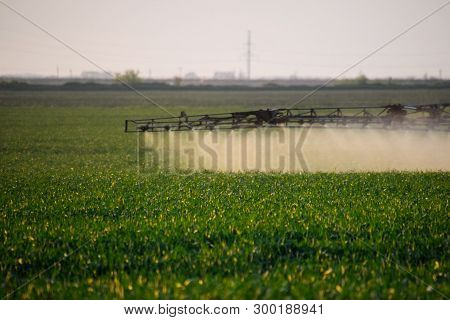 Jets Of Liquid Fertilizer From The Tractor Sprayer. Tractor With The Help Of A Sprayer Sprays Liquid