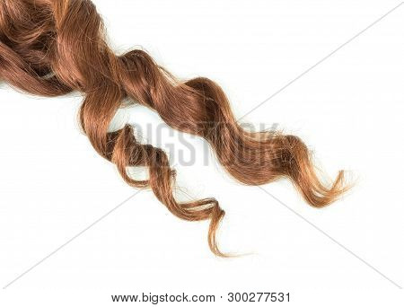 Beautiful Manicured Curls Curly Braun Hair Isolated On White Background