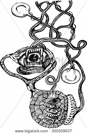 Black White Illustration Of A Psychedelic Motif. Eye, Jaw, Turtle Armor, Seeds.