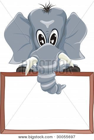 elephant and signboard