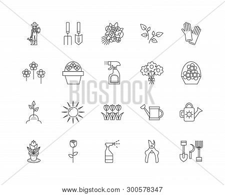 Floristry Education Line Icons, Signs, Vector Set, Outline Illustration Concept
