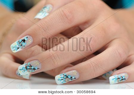 Female Hands With Manicure Close Up. Drawing Of A Branch With Blue Flowers.