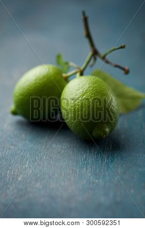 Fresh lime on the branch