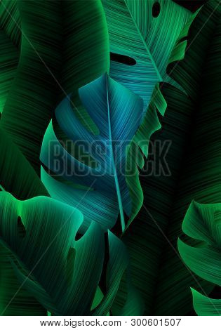 Tropical Banner With Realistic Banana Tree And Monstera Leaves. Minimalist Greenery Bg. Background W