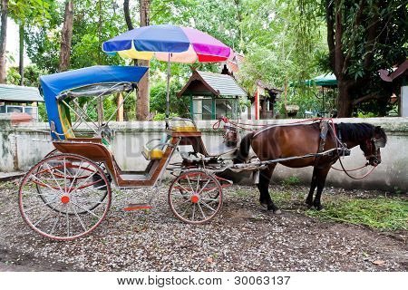 Horse Carriage In Thailand