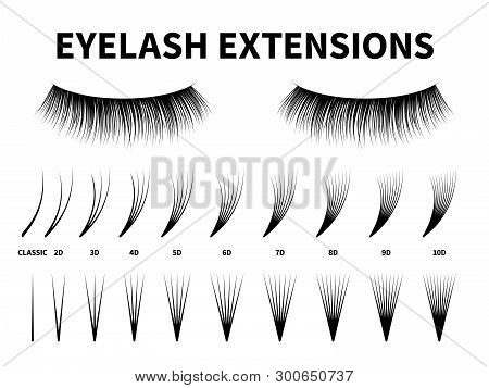 Eyelash Extensions. Curling Extension Volume Eyelashes, Tweezer Tool Guide Fake Lash. Artificial Las