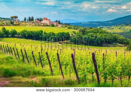 Amazing Wine Grower Territory And Vineyard With House On The Hill, Chianti Region, Tuscany, Italy, E