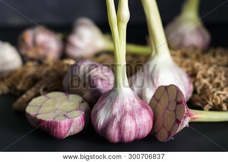 Fresh Garlic. Garlic On A Black Background. Ingredients For Cooking With Garlic. Farm Food. Food Sto