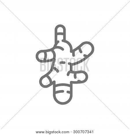 Ginger, Turmeric, Spice Line Icon. Isolated On White Background