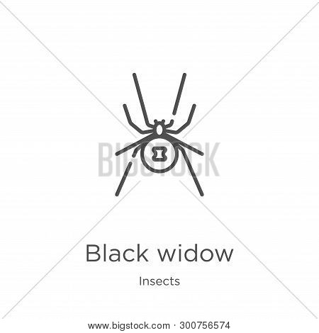 Black Widow Icon. Element Of Insects Collection For Mobile Concept And Web Apps Icon. Outline, Thin