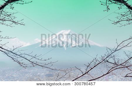 Mountain Fuji In Winter Framed By Dry Fall Tree In Teal Color