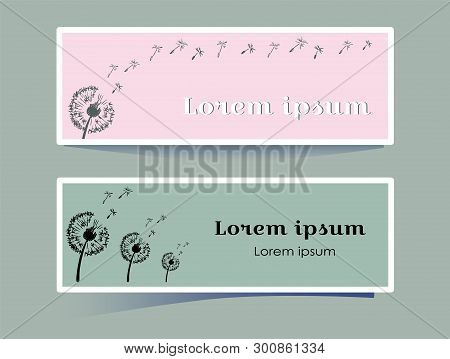 Stylish Horizontal Banner With Dandelion Flower On Pink And Gray Background. Silhouette Plants Blown