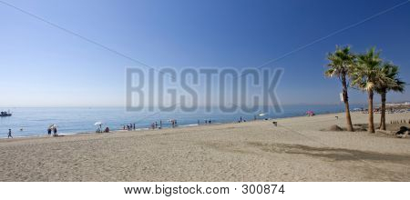 Sandy Beach With Palm Trees At Estepona In Southern Spain
