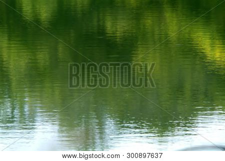 Po River Water With Slime And Plants.