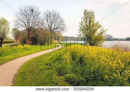 Winding Path Through A Park In Springtime