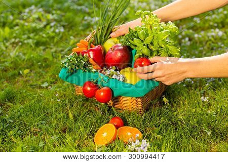 Female Hands Holding Wicker Basket With Vegetables And Fruits, Close Up.