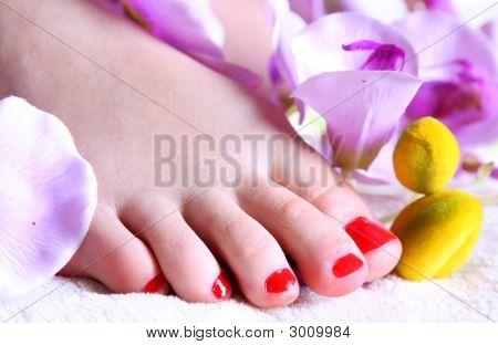 Fingers In Flower