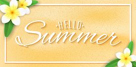 Hello Summer Web Banner. Tropical Plumeria Flowers On The Beach Sand With Text. Festive Summer Cover
