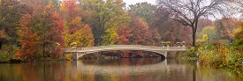 Autumn At The Bow Bridge In Central Park, New York City