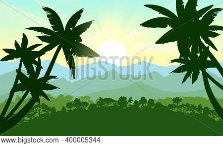 Palm Trees. Jungle Silhouette. Rainforest. Panoramic Landscape. On The Horizon There Are Mountains A