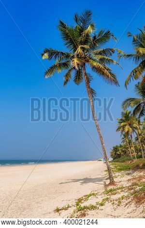 Palm Trees On Tropical Beach. Sandy Beach With Palm And Turquoise Sea In Goa, India. Summer Vacation