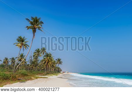 Tropical White Sand Beach With Coco Palms And The Turquoise Sea In Goa, India