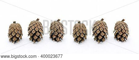 Pinecones On The White Snow. Winter Fir Cones On A Blurry Background