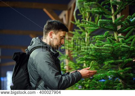 Theme Is Symbol Of Christmas And New Year Holidays. Man Choosing Christmas Tree. Christmas Tree Mark