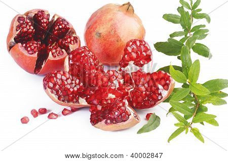 Pomegranate Fruits With Green Leaf On White Background