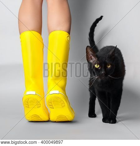 Young Woman Legs In Illuminating Yellow Rubber Boots On Tiptoe With Black Cat On Ultimate Gray Backg