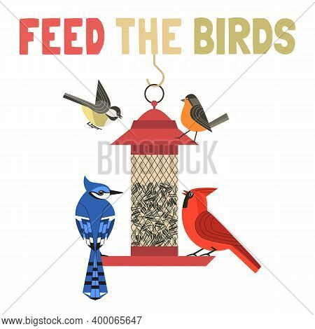 Bird-feeding Flat Color Vector Poster. Help Wild Birds In Backyard To Survive Concept. Wild Birds On
