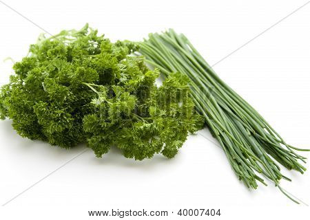 Green Parsley with Green Chives