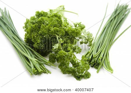 Parsley with Chives