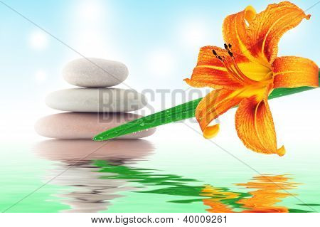 The Mystical Collage With A Stone, A Golden Lily.