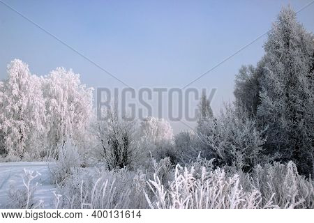 Winter Landscape. Rime Ice Covers All Plants: Trees, Shrubs And Dry Grass. And Above All This Is A C