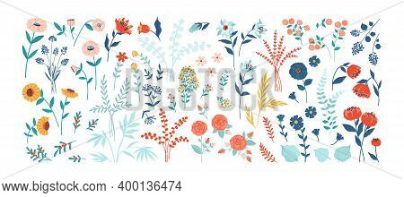 Flowers. Cartoon Floral Nature Decorative Elements, Spring And Summer Green Plants. Isolated Blossom