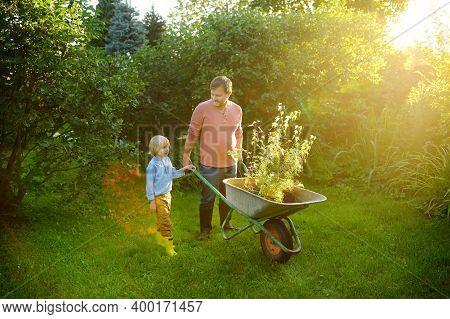 Gardener Man And Little Child Pushing Wheelbarrow With Plant Seedlings In Backyard. Spring Season Wo