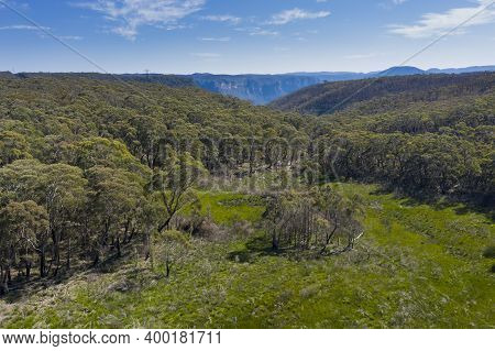Aerial View Of Forest Regeneration After Bushfires In The Blue Mountains In Regional New South Wales