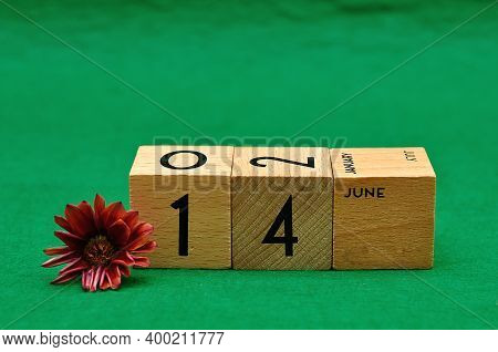 14 June On Wooden Blocks With An African Daisy On A Green Background