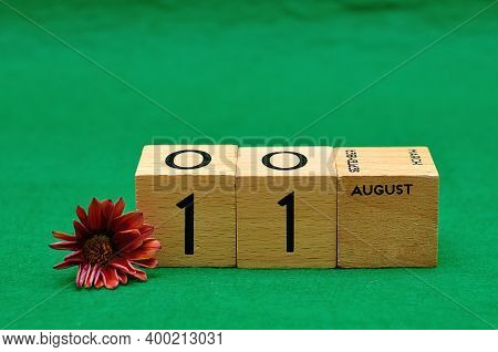 11 August On Wooden Blocks With An African Daisy On A Green Background