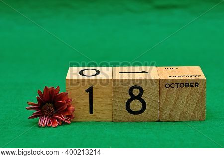 18 October On Wooden Blocks With An African Daisy On A Green Background