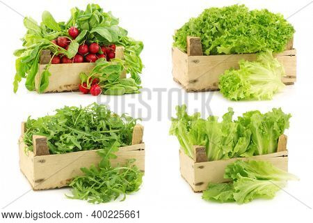 Fresh lettuce, radishes and other various salad vegetables in a wooden crate on a white background