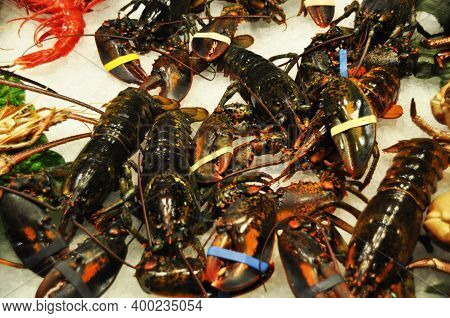 Marine Crustaceans. Selling Lobsters, Lobsters At The Local Market.
