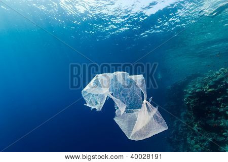 A discarded plastic carrier bag floats in the ocean next to a coral reef poster