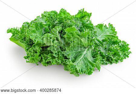 Kale Leaf Salad Vegetable Isolated On White Background. Kale Closeup. Flat Lay. Food  Vegan Concept.